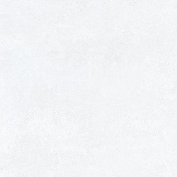 11 CHALOTTE WHITE 13.95E